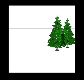 trees could be big