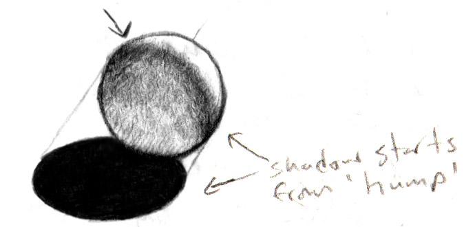 illustrator's hump
